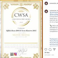 CWSA Winner Castigano